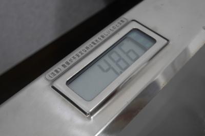 P2490066.JPG