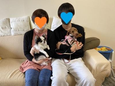うずらトライアル.jpg