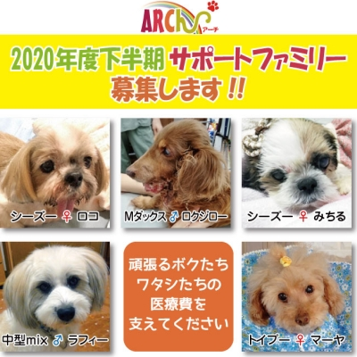 support-family-2020-2募集ポスター.jpg