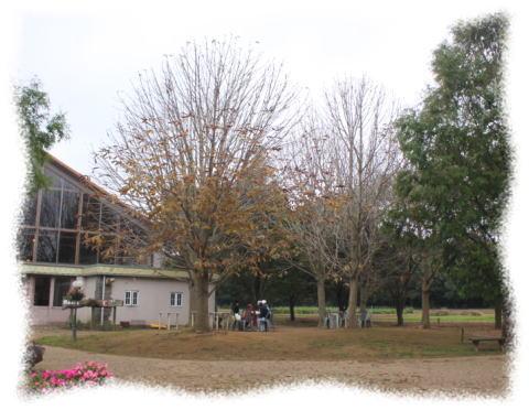 20091024-05