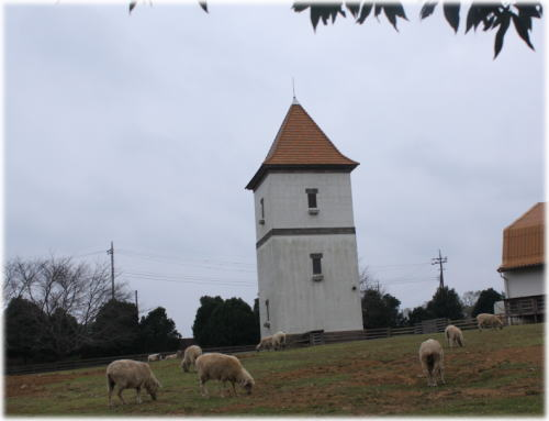 20091024-25