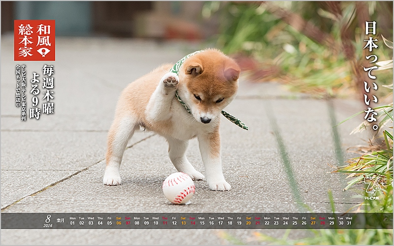 s-豆助壁紙2016.8月.jpg
