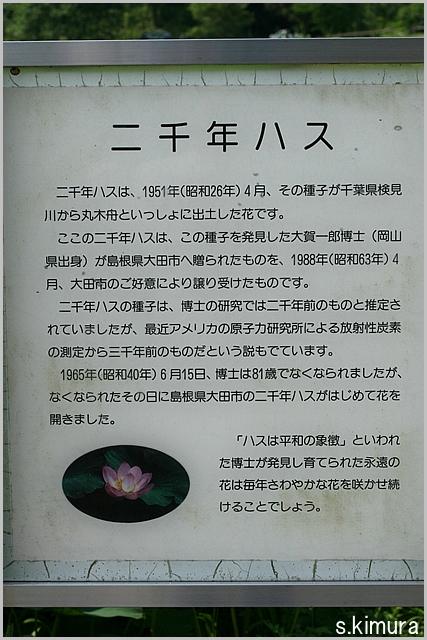 s-IMG_4138.jpg