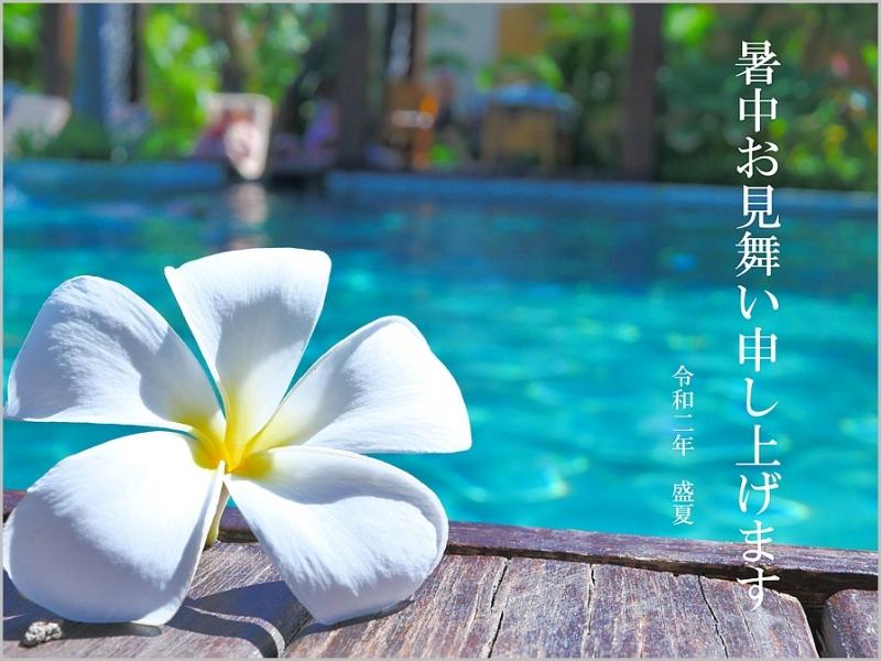 s-1687561_l-2.jpg