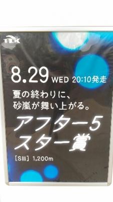 明日から大井濃密4日間開催!   ...