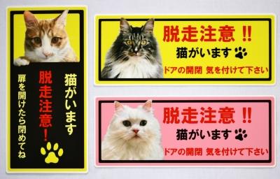 猫 脱走 注意 ステッカー 雑貨 秋田