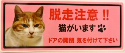 猫 脱走注意 ステッカー 猫雑貨 猫グッズ