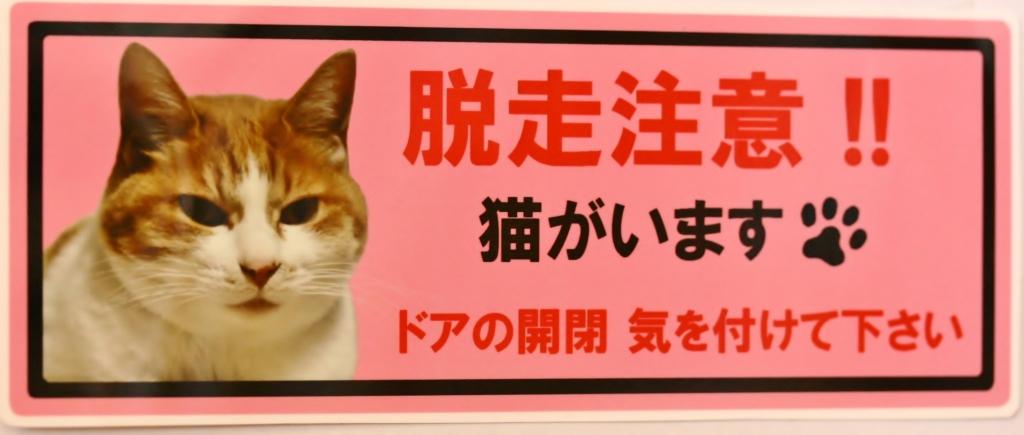 猫 脱走 ステッカー 猫雑貨 秋田 かぎしっぽ
