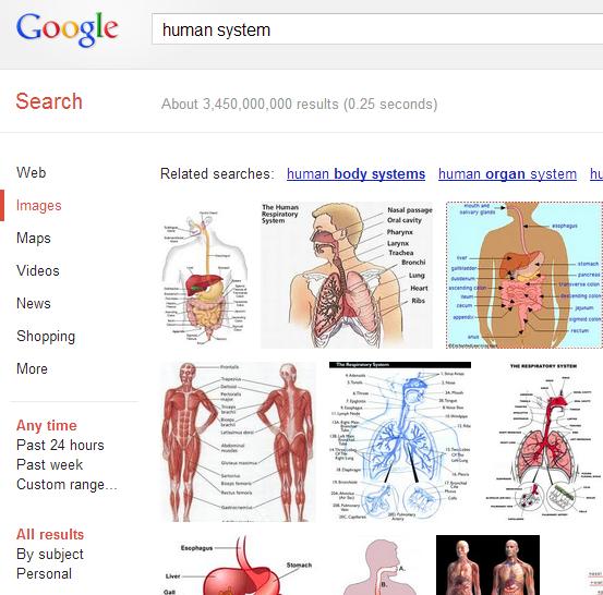「human system」のイメージ