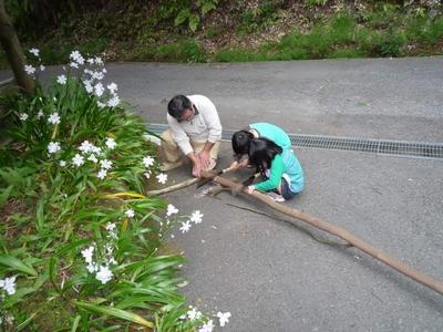 20130414子供達と薪作り