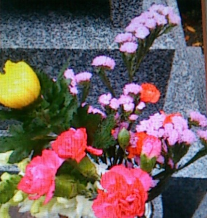 photoshake_1353387329118-1.jpg