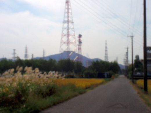 鉄塔につづく道