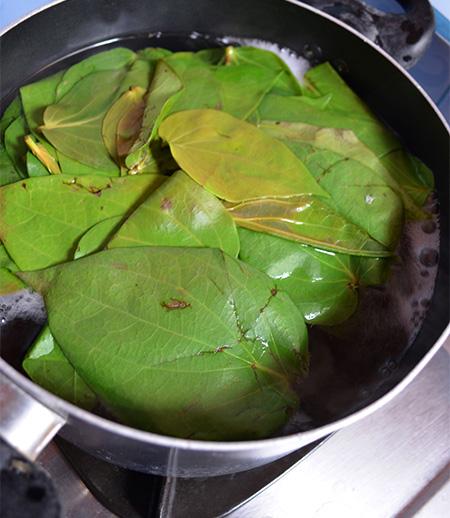 シリの葉っぱを鍋で煮ます。