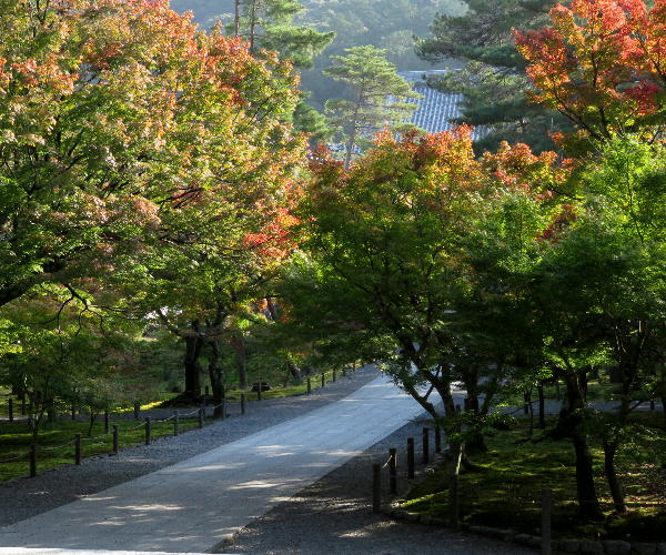 紅葉、南禅寺