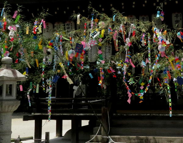 白峯神宮、笹飾り