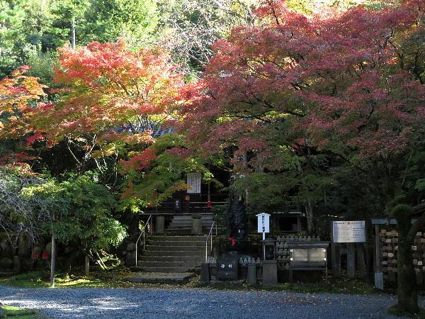 今熊野観音寺、紅葉状況