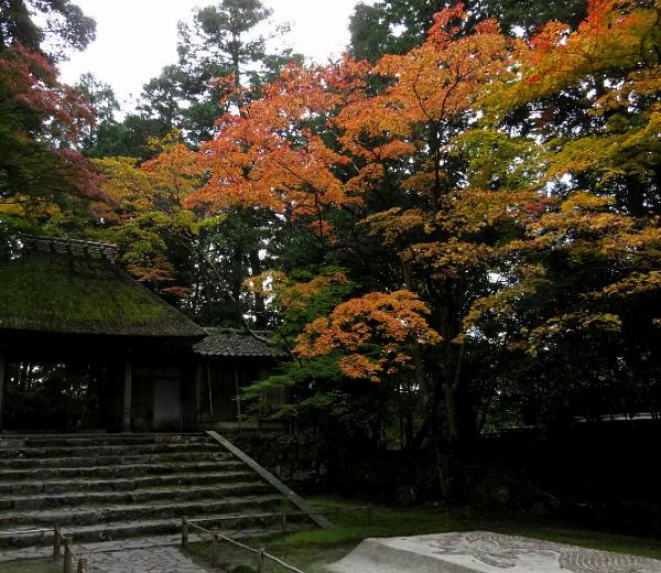 法然院、紅葉