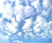 06-07-11_05-52~00.jpg