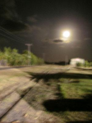 月夜のレース