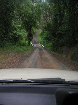 テイラー邸への道のり2