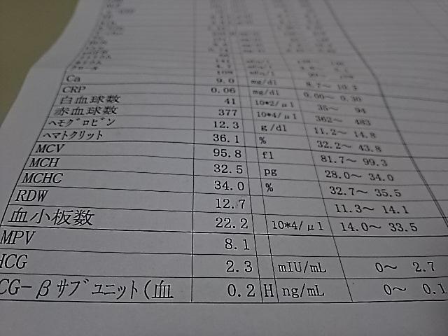 DSC_0974.JPG