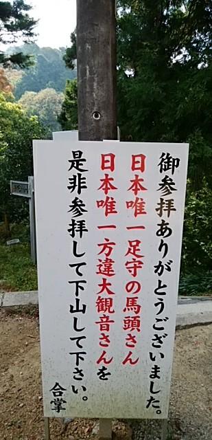 IMG_20171105_135219.jpg
