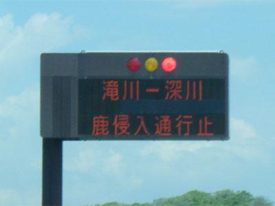 北海道 高速 道路 通行止め