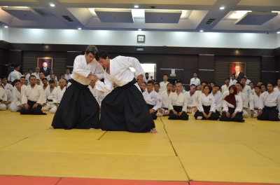 Tomohiro Mori Aikido Demonstration