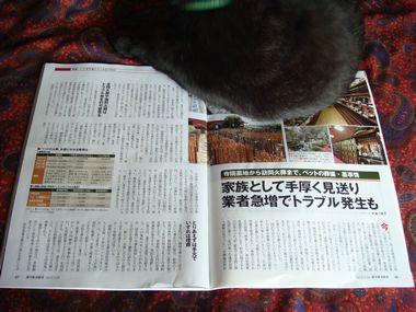 週刊東洋経済&アエラ 008.jpg