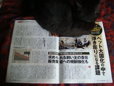 週刊東洋経済&アエラ 010.jpg