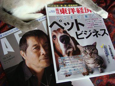 週刊東洋経済&アエラ 016.jpg