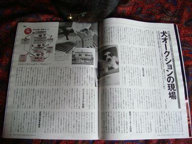 週刊東洋経済&アエラ 014.jpg