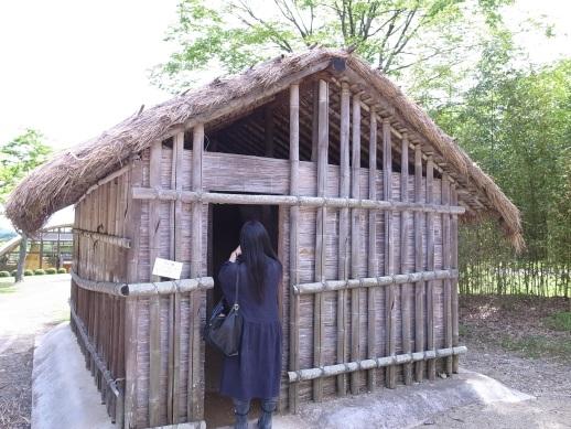 ニャキュウサの家