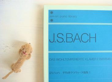 DSC04873.JPG