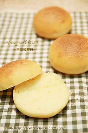 自家製酵母 はちみつミルクパン2