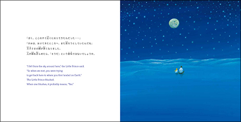 hoshino_9.jpg