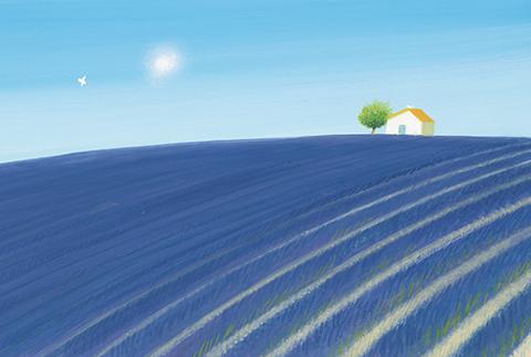 180726-1_Lavenders Blue_表.jpg
