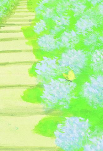 PC147_あじさい寺_4.jpg