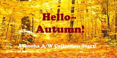 秋の新作入荷