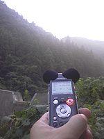 森の録音1