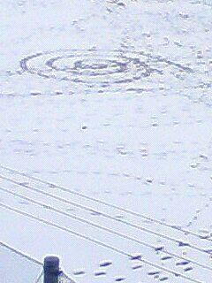 雪のうずまき