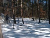 雪と影のコントラストも◎