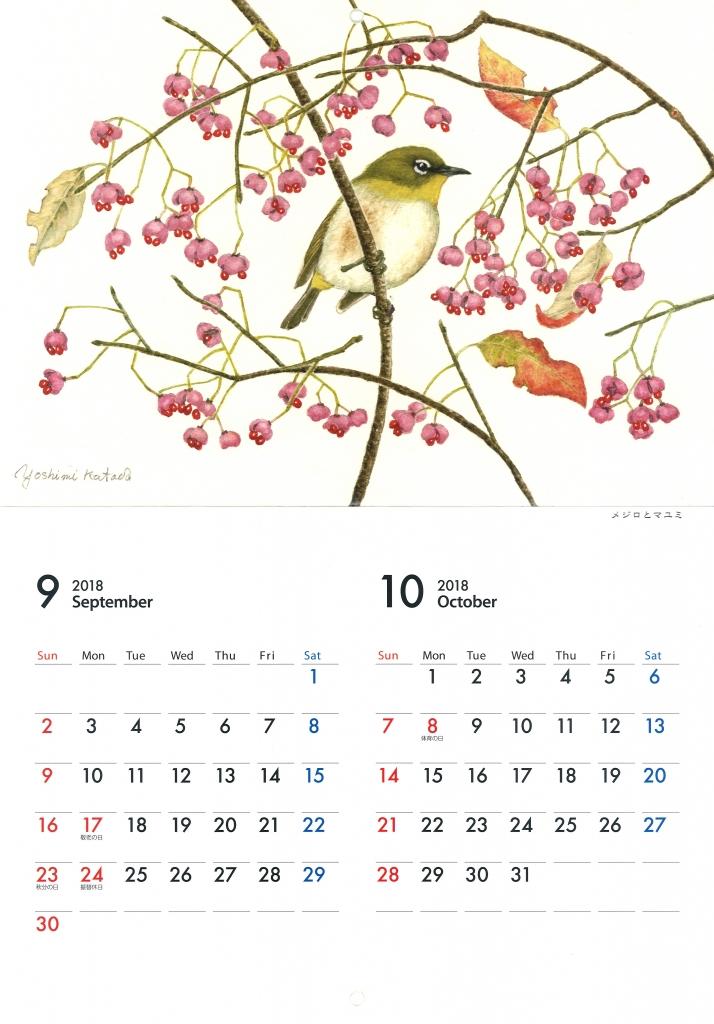 片田好美 カレンダー 2018