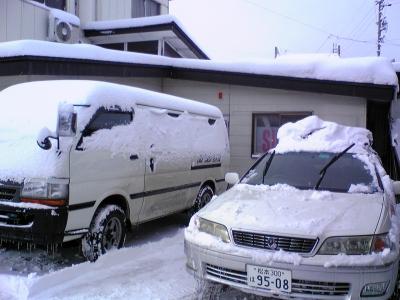 約30cmでしょうか?なかなかの積雪です。