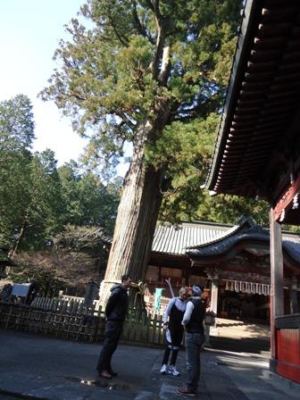 「富士太郎杉」の前で参拝方法を説明