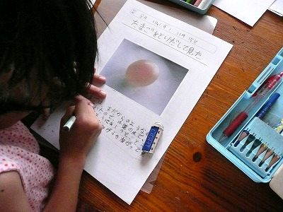 酢卵の実験の自由研究を ... : 自由研究 小学4年生 理科 : 自由研究