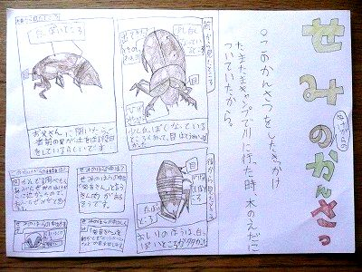 小4娘の夏休み自由研究・セミ ... : 漢字ノート ダウンロード : 漢字