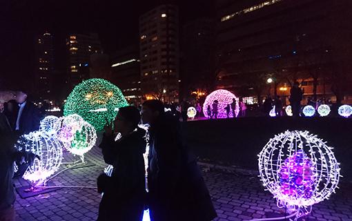 札幌大通り公園ホワイトイルミネーション