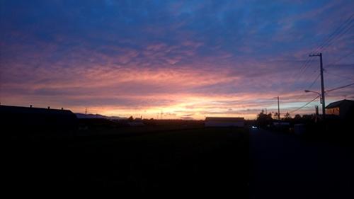 今日の夕焼けきれい