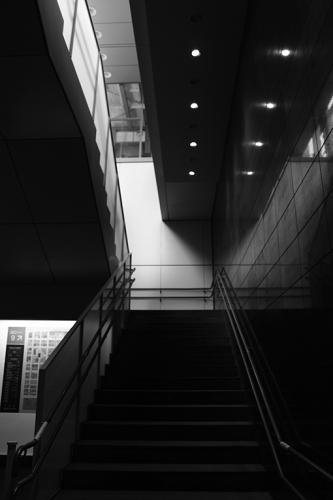 510px-IMG_0503.jpg